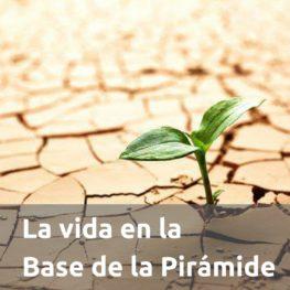 La vida en la Base de la Pirámide